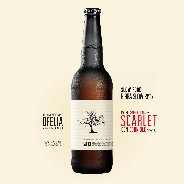 scarlet birra ofelia fruit ale